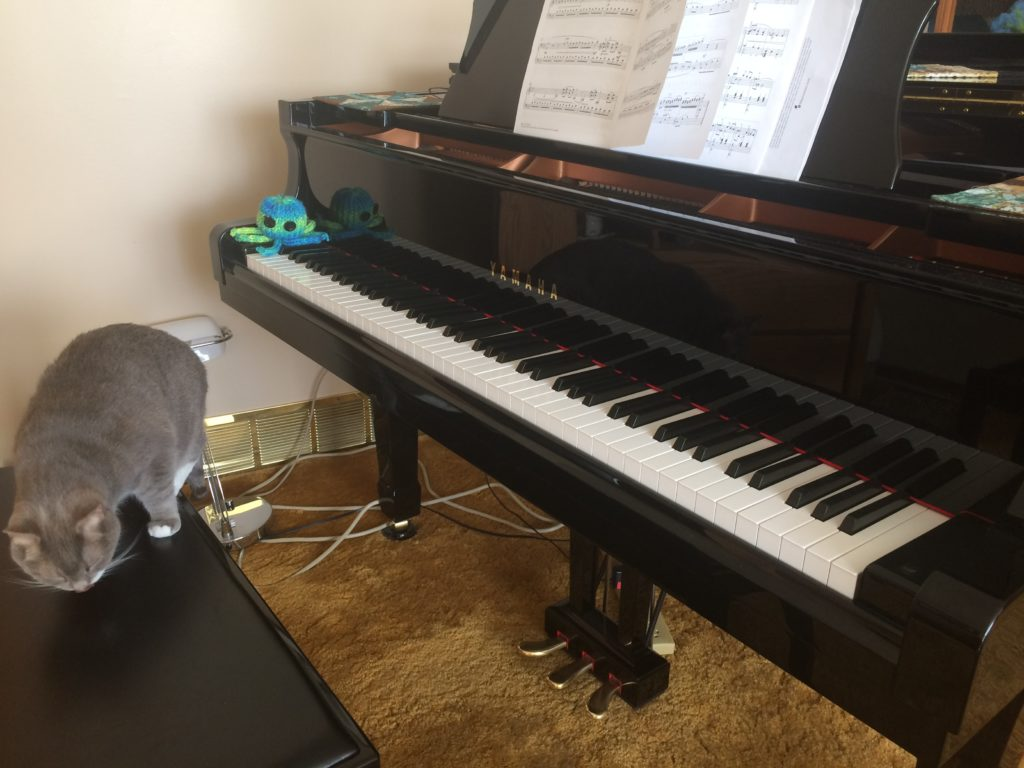 Picture of a good angle for a piano video lesson