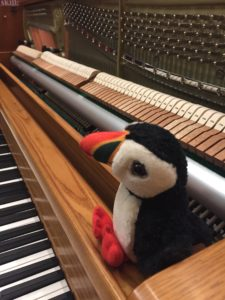 Puffy the puffin at a piano
